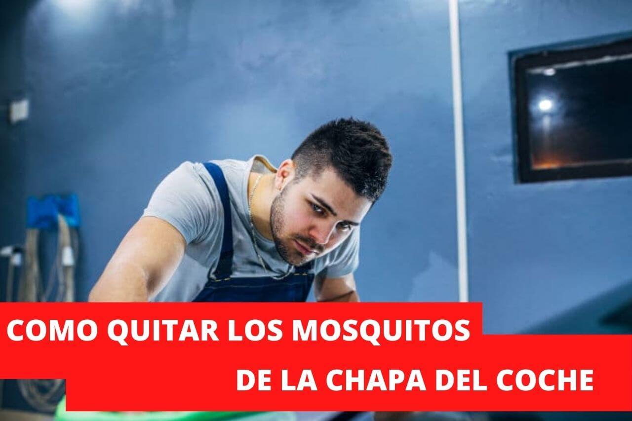 eliminar los moquitos pegados del coche